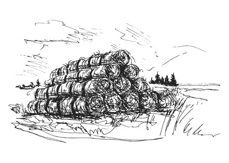 hand sketch the landscape with bales of straw