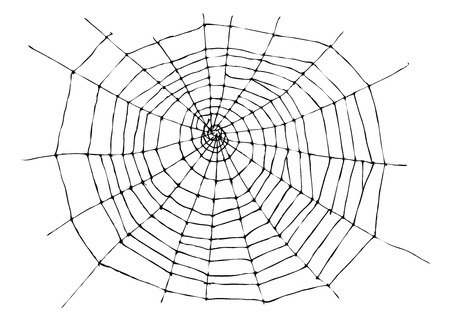 spider web: hand sketch spider web Illustration