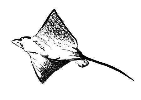 hand sketch ray Illustration