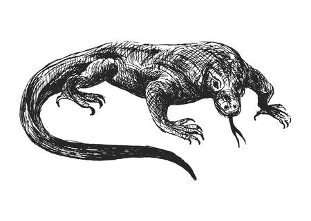cruel zoo: hand sketch varan
