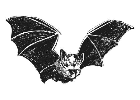 in common: sketch hand bat