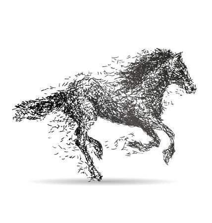 horse chestnuts: Vector illustration of a running horse