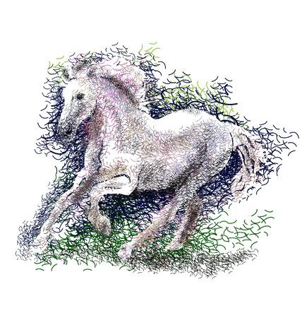 cut away: Vector color illustration of a running horse Illustration