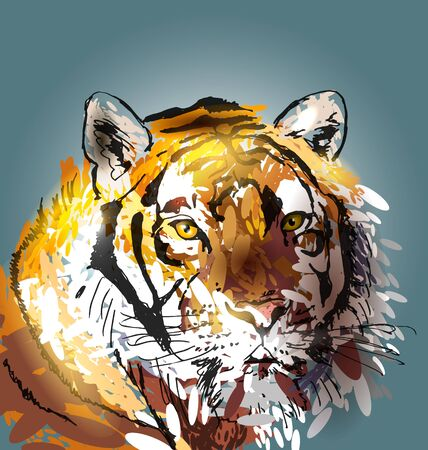 bengal light: Colorful  illustration head tiger