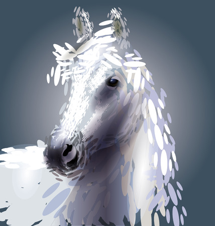 horsehair: illustration of a horse head