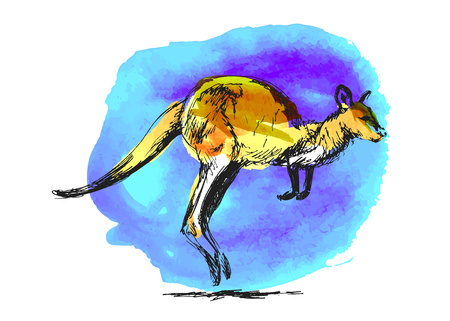 Colored  leaping kangaroo