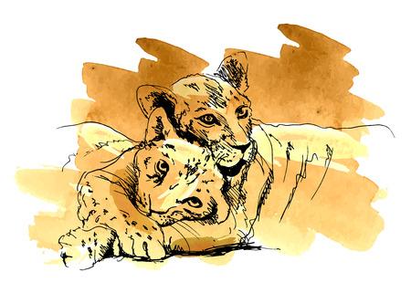 cachorro: león de color con el cachorro