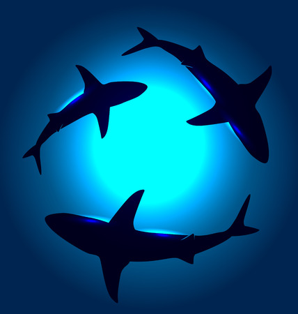 below: Vector background with floating sharks