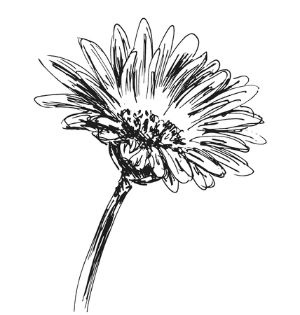 Hand schets bloem