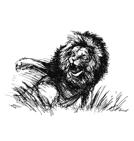 raging: Hand sketch of a raging lion Illustration