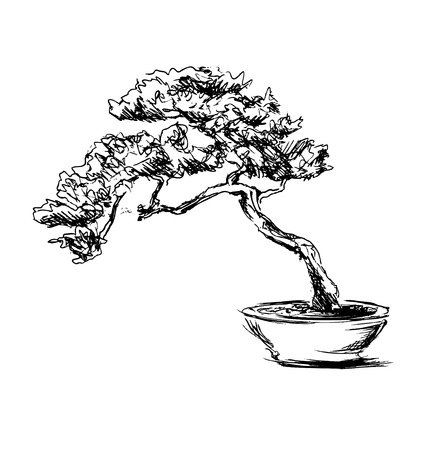 Hand schets bonsai Stock Illustratie