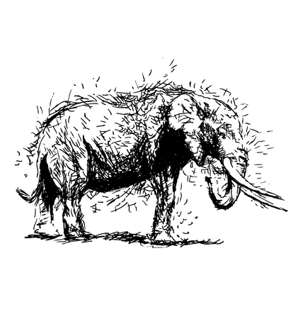 national parks: Hand sketch of an elephant from the side