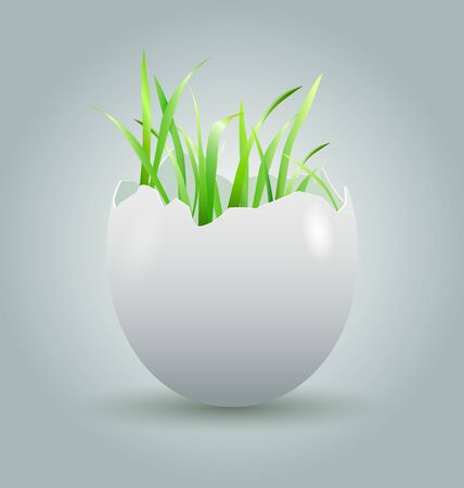 eggshell: illustration eggshell with growing grass