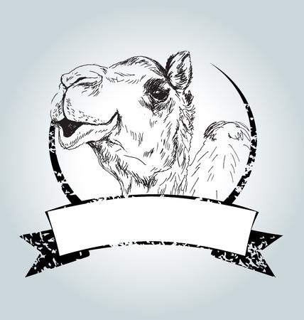 Vector uitstekend etiket met camel Vector Illustratie