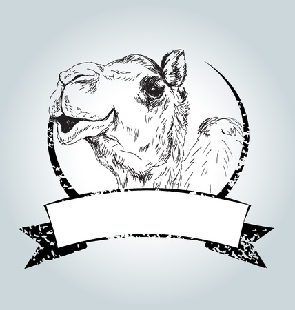 Vector vintage label with camel