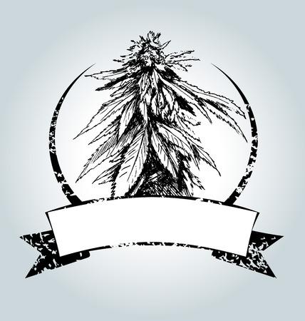 Vector vintage étiquette avec de la marijuana Vecteurs