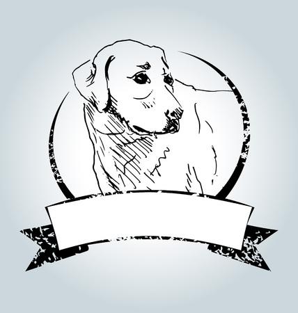 labrador: Vector vintage label with sketch Labrador