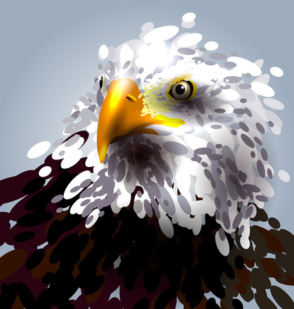 abstrakt: Vector illustration of the eagles head