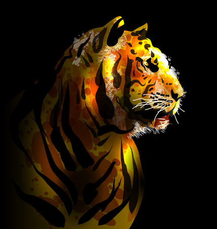 bengal light: Digital painting of a tigers head. Vector illustration
