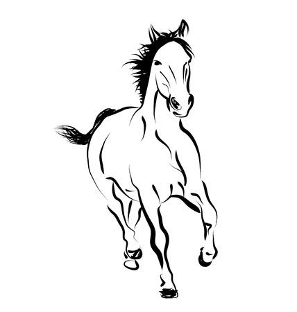 cut away: Vector line sketch of a running horse