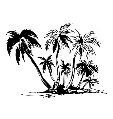 palmtree: Hand sketch of the island with palm trees. Vector illustration