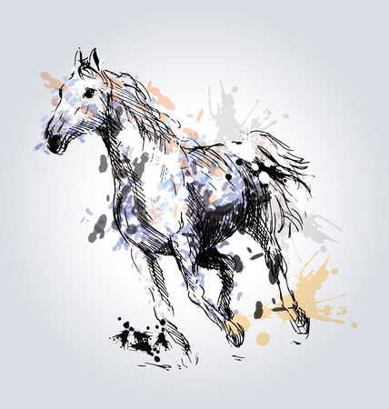 Colored Hand drawing horse.