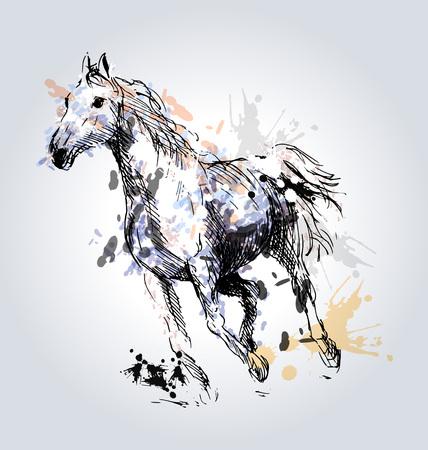 Gekleurde Hand tekening paard.