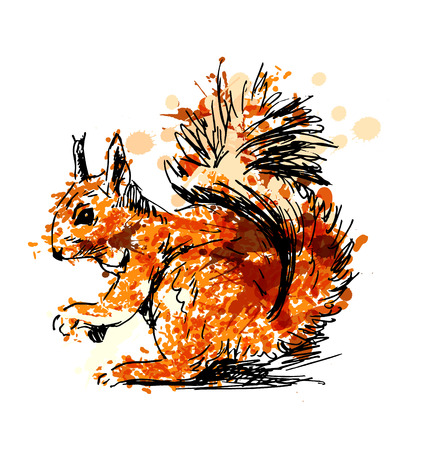 Colored Hand drawing squirrel.