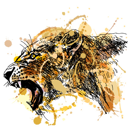 Colored hand sketch roaring lioness head. Vector illustration Illustration