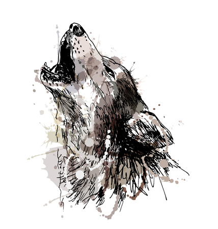 Colored hand drawing of a howling wolf. Vector illustration Ilustração