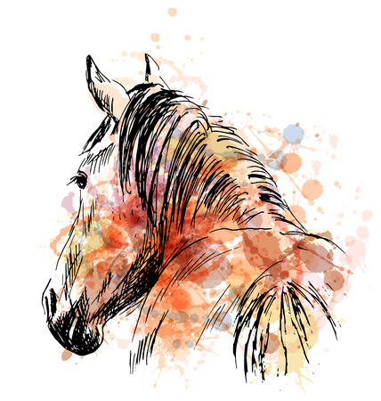 Colored hand sketch horses behind. Vector illustration Illustration