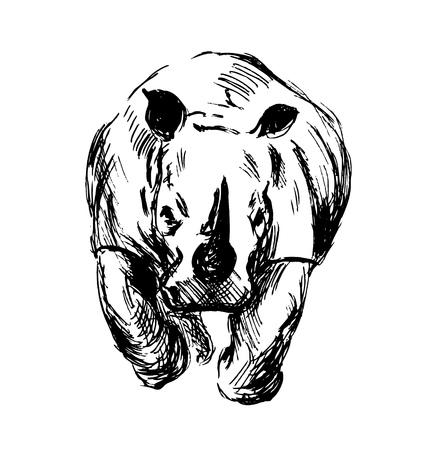 rhino vector: Hand sketch of the running rhino. Vector illustration
