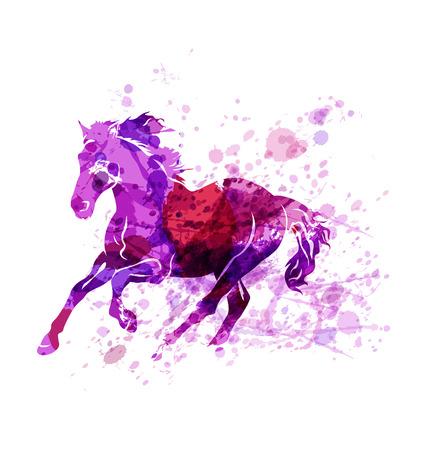 foal: Vectorwatercolor illustration of running horse Illustration