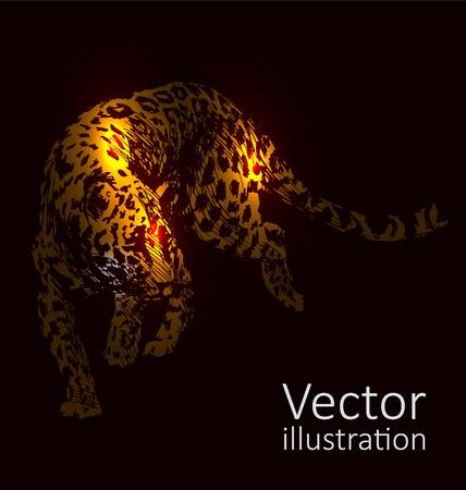 Vector illustration of a jaguar on a black background