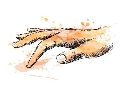 Farbige Skizze der berührenden Hand. Vektor-Illustration Standard-Bild - 76081534