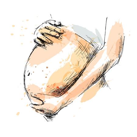 abdomen women: Colored hand sketch pregnant belly. Vector illustration