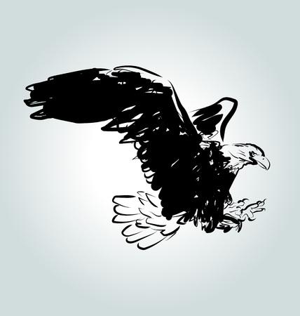Vector eagle sketch