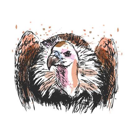 Colored hand sketch vulture. Vector illustration