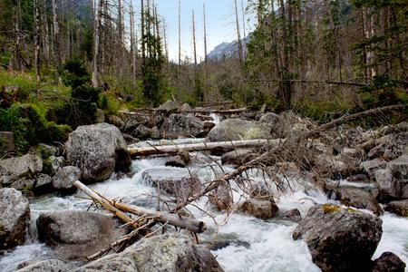 Landschap met berg rivier