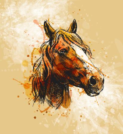 色手が馬の頭をスケッチします。  イラスト・ベクター素材