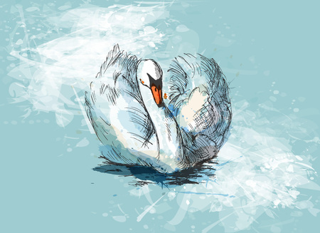 Colored hand sketch floating swan
