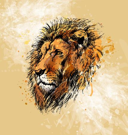 Colored hand sketch lion head Illustration