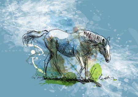 하얀 말의 색깔의 손 스케치