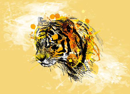 Colored hand sketch of the head of the tiger