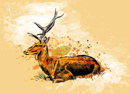 Colored hand sketch sitting deer