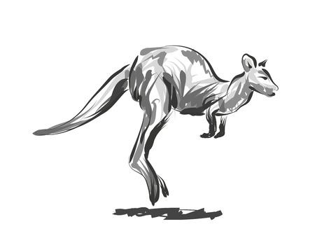 Vector line sketch leaping kangaroo