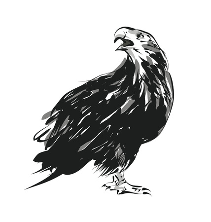 Vector sketch of an eagle