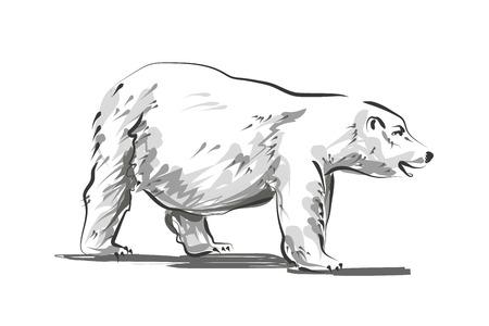 북극곰의 벡터 라인 스케치