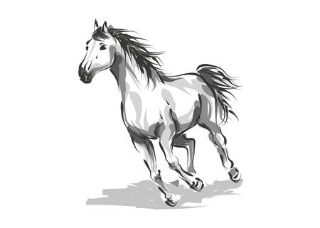 Vector digital drawing horse