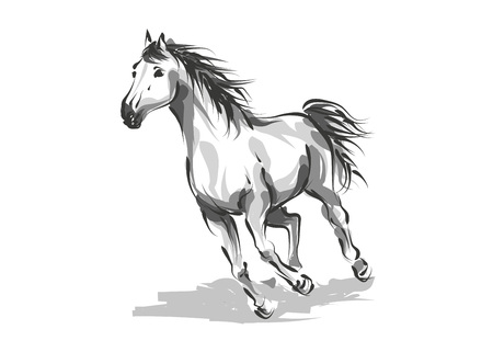 Vector digital drawing horse